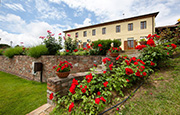 Organic Farm house holidays Accomodation in Lucca Tuscany